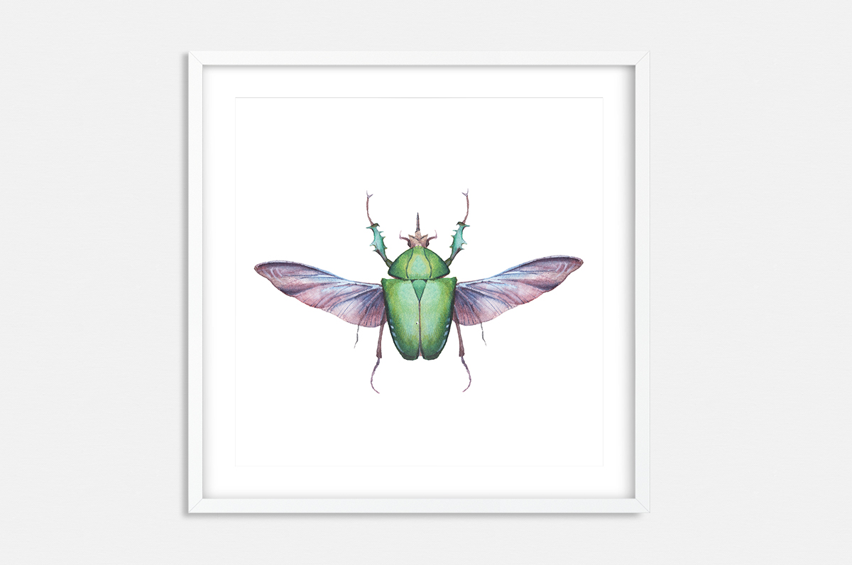 Plakat - Zielony chrząszcz - fototapeta.shop