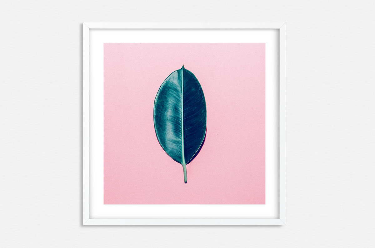Plakat - Pop-Art liść fikusa - fototapeta.shop