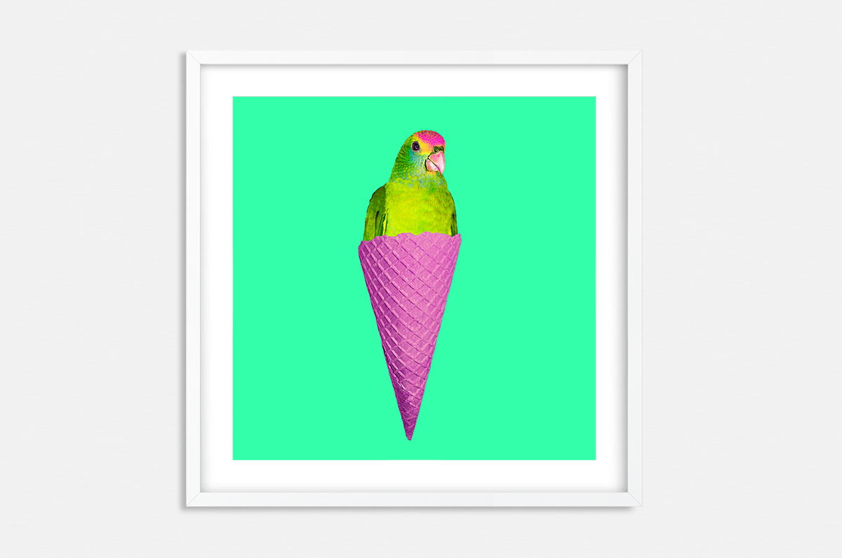 Plakat - Pop-Art papuga w waflu - fototapeta.shop