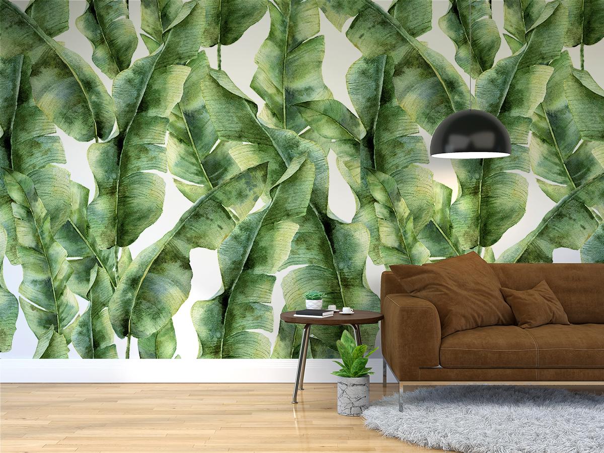Tapeta - Zgaszona zieleń bananowców - fototapeta.shop