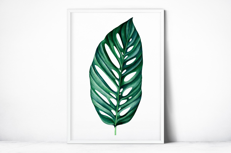 Plakat - Dziurawy liść - fototapeta.shop